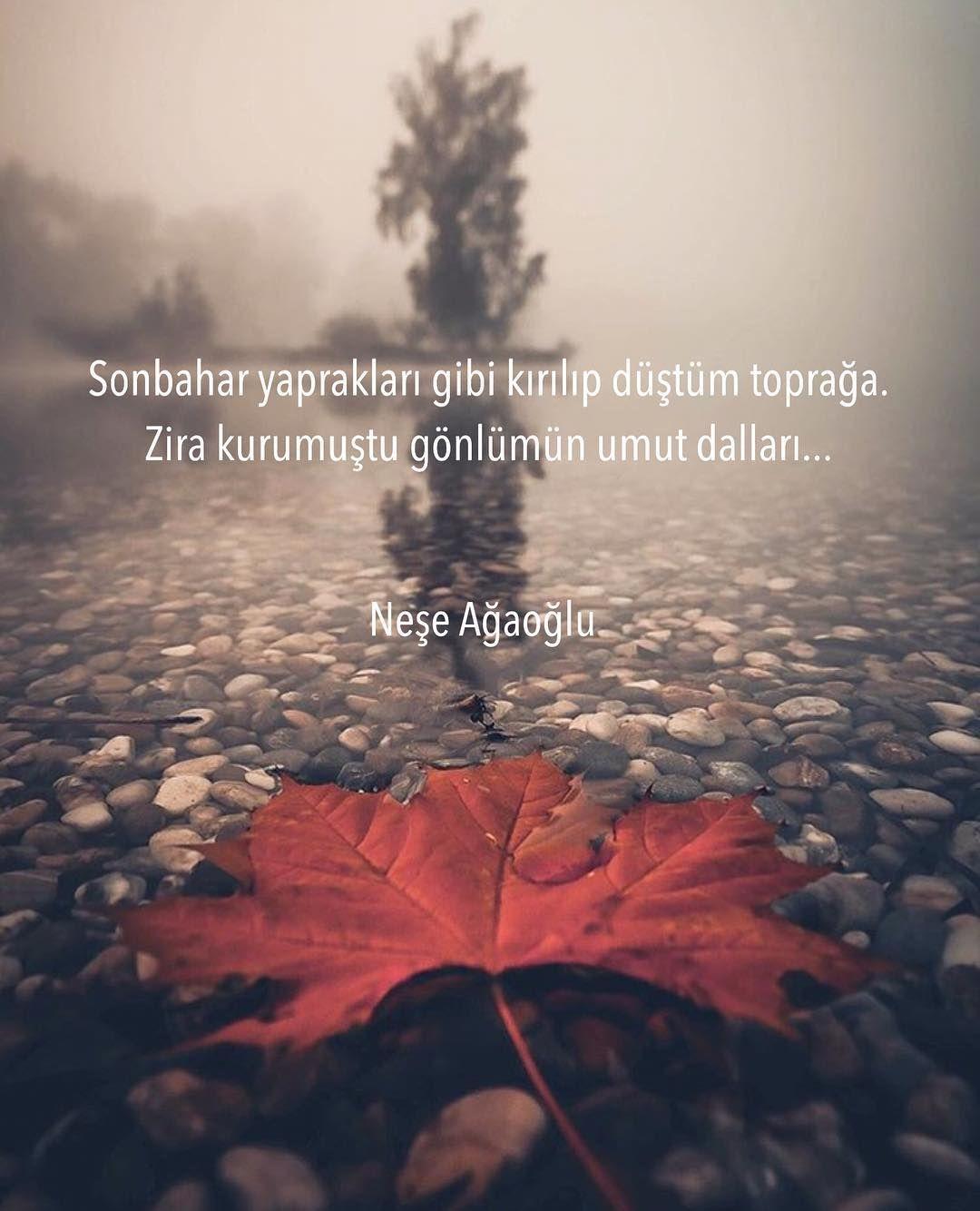 sonbahar yaprakları gibi - Sonbahar İle İlgili Sözler - Resimli Sonbahar Sözleri, resimli-sozler, guzel-sozler