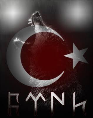 Bozkurt.. - Ülkücü İle İlgili Resimli Sözler - Ülkücü Sözleri, Milliyetçilik, Türk Sözleri, resimli-sozler, populer-sozler, mesajlar, anlamli-sozler