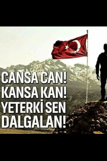 Cansa can kansa kan yeterki sen dalgalan - Türk Ve Türkiye İle İlgili Resimli Sözler - Türk Ve Türkiye ile ilgili sözler, guzel-sozler