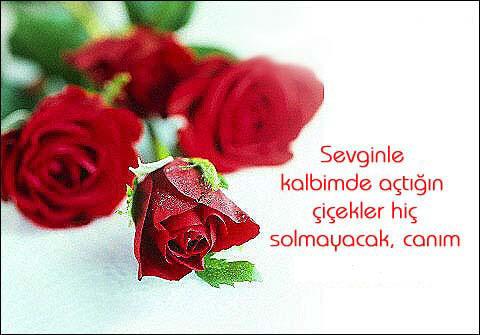Sevginle kalbimde açtığın çiçekler hiç solmayacak canım - 14 Şubat Sevgililer Günü Mesajları Resimli - Sevgililer Günü Mesajları, resimli-sozler, guzel-sozler, ask-sozleri, anlamli-sozler
