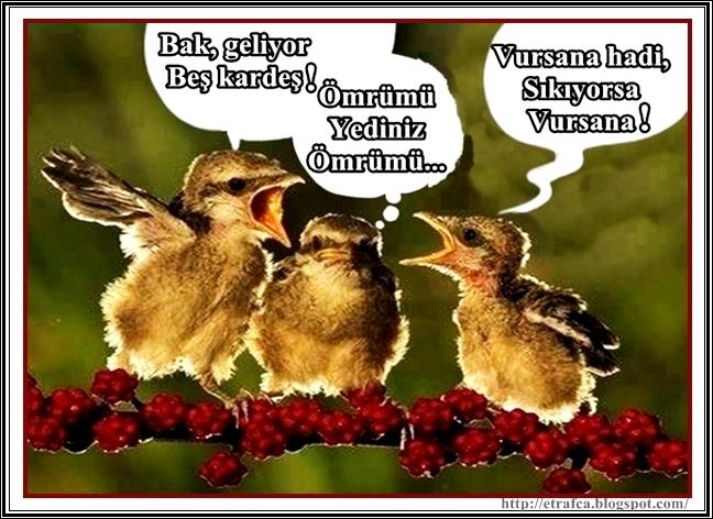 Bak geliyor beş kardeş.. Komik Facebook Sözleri Gülme Garantili Resimli Facebook Sözleri - Komik Facebook Sözleri - Gülme Garantili Resimli Facebook Sözleri, facebook-sozleri